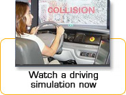 See our simulation video...